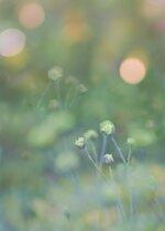 Photo game Edit photo-.jpg